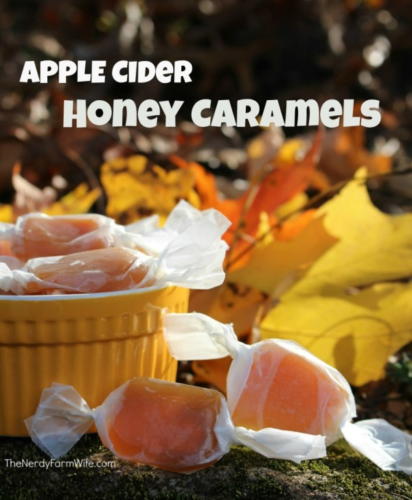 ... apple cider mauled apple cider spiced caramel apple cider recipe