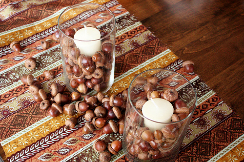 drying acorns for crafts